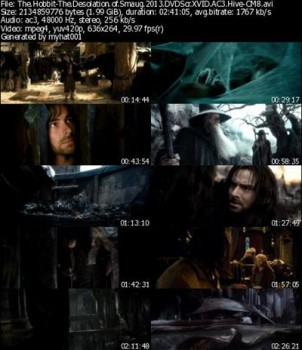 The Hobbit-The Desolation of Smaug (2013) DVDScr AC3 XviD Hive-CM8