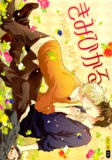 http://aspiredemaciado.blogspot.com.ar/2012/07/kimi-hikaru-1.html
