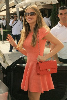 Sofia Vergara - grabs lunch in Beverly Hills - 29.03.2014