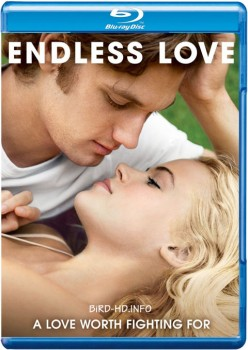Endless Love 2014 m720p BluRay x264-BiRD