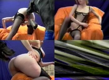 925fef331116879 BFI Presents  Animal Passion  horny girls fucking a dog