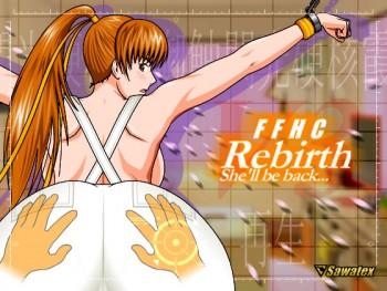 Feel the Flash Hardcore - Kasumi:Rebirth
