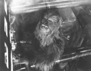 Звездные войны Эпизод 5 – Империя наносит ответный удар / Star Wars Episode V The Empire Strikes Back (1980) 70c34a336169290