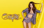 Megan Fox : Hot Widescreen Wallpapers x 3
