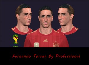 Download PES 2014 Torres Face by Professional