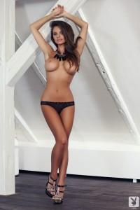 http://thumbnails112.imagebam.com/33811/f2a308338106184.jpg