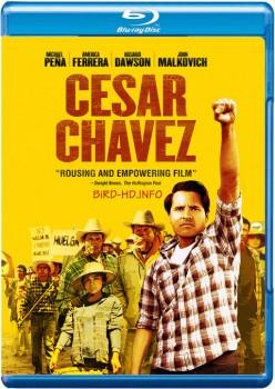 Cesar Chavez 2014 m720p BluRay x264-BiRD