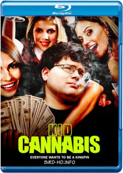 Kid Cannabis 2014 m720p BluRay x264-BiRD
