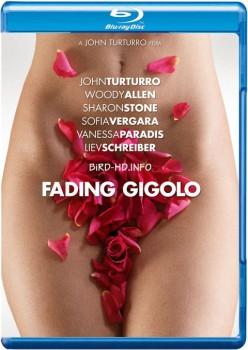 Fading Gigolo 2013 m720p BluRay x264-BiRD