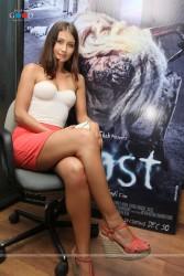 http://thumbnails112.imagebam.com/34333/bf6616343322423.jpg