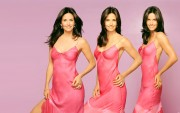 Courteney Cox : Sexy Widescreen Wallpapers x 21 (4 of 4)