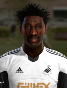 Download Wilfreid Bony Face by Prince For PES 2013
