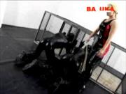 http://thumbnails112.imagebam.com/35227/702e3e352264351.jpg