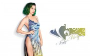 Katy Perry : Hot Widescreen Wallpapers x 14