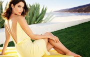 Cobie Smulders : Sexy Wallpapers x 4