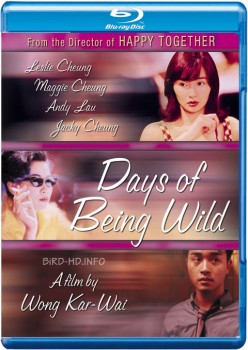 Days of Being Wild 1990 m720p BluRay x264-BiRD