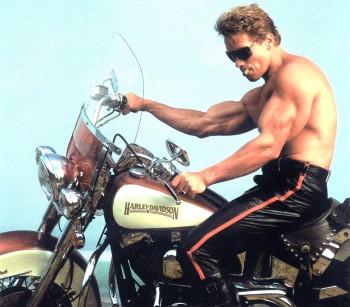 Терминатор 2 - Судный день / Terminator 2 Judgment Day (Арнольд Шварценеггер, Линда Хэмилтон, Эдвард Ферлонг, 1991) Bb03f3360658163
