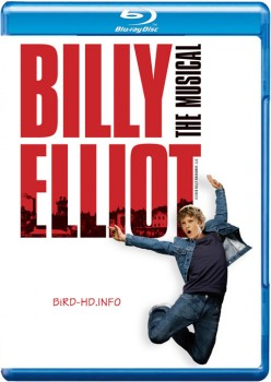 Billy Elliot the Musical Live 2014 m720p BluRay x264-BiRD