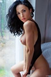 http://thumbnails112.imagebam.com/38456/378096384550404.jpg