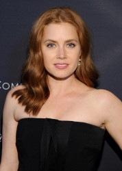 Amy Adams - Weinstein Company's Academy Awards Nominees Dinner in LA 2/21/15