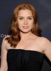 Amy Adams - Weinstein Company's Academy Awards Nominees Dinner in LA 2/21/15