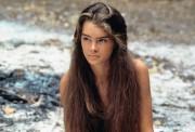 Brooke Shields young x 4HQ B4645a396916041